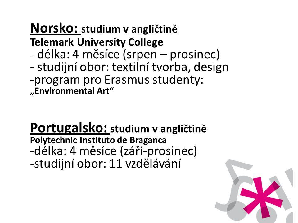 Norsko: studium v angličtině Telemark University College