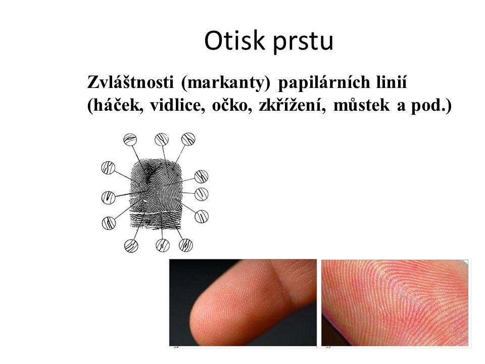 Otisk prstu Zvláštnosti (markanty) papilárních linií (háček, vidlice, očko, zkřížení, můstek a pod.)