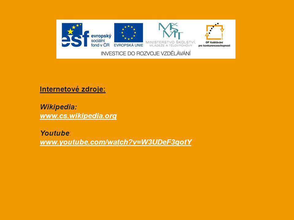 Internetové zdroje: Wikipedia: www.cs.wikipedia.org Youtube: www.youtube.com/watch v=W3UDeF3qotY