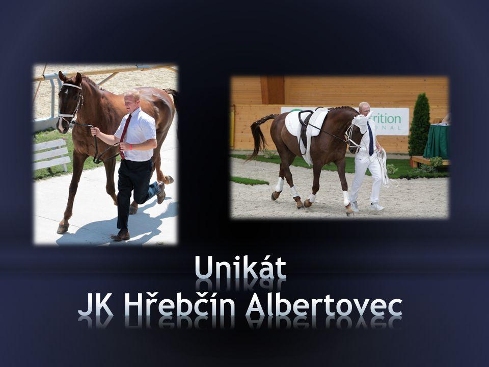 Unikát JK Hřebčín Albertovec