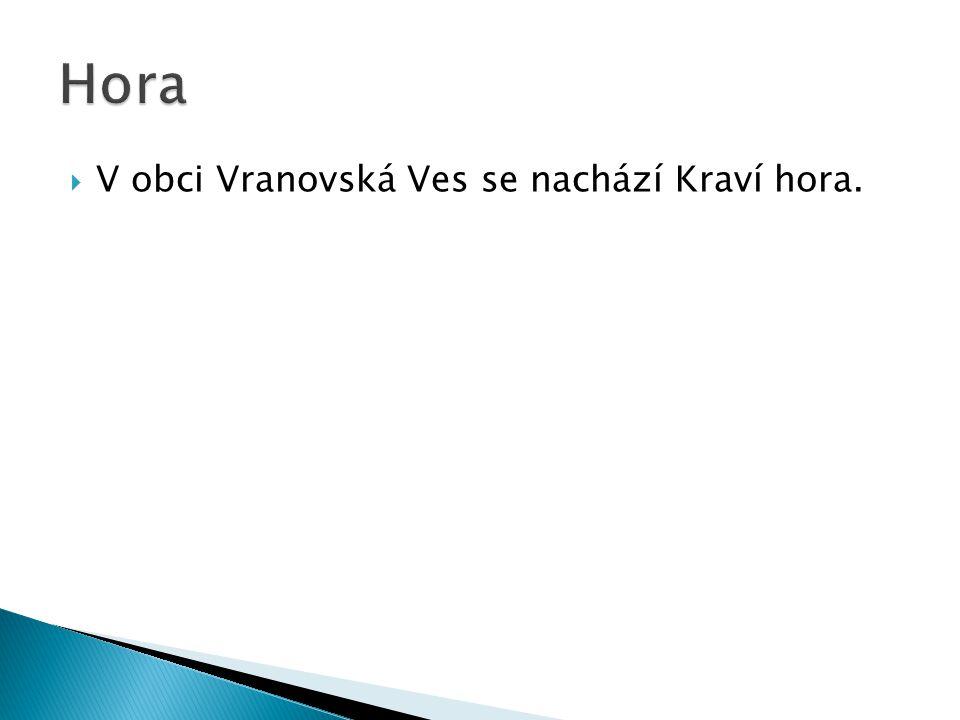 Hora V obci Vranovská Ves se nachází Kraví hora.