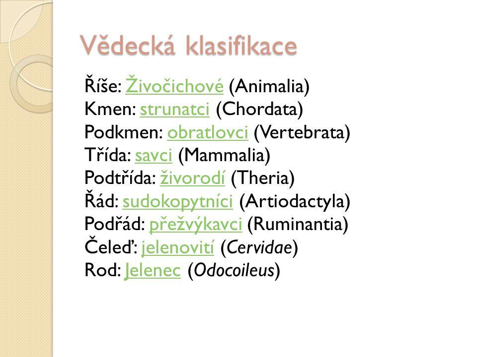Vědecká klasifikace