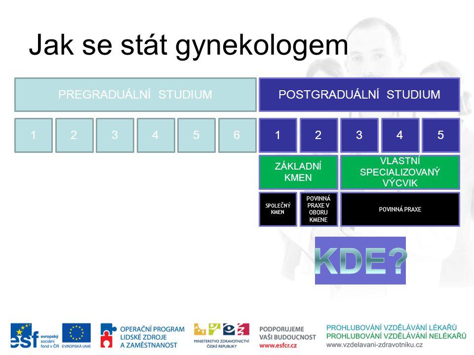 KDE Jak se stát gynekologem PREGRADUÁLNÍ STUDIUM