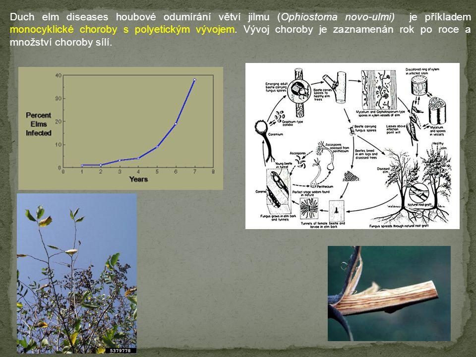 Duch elm diseases houbové odumírání větví jilmu (Ophiostoma novo-ulmi) je příkladem monocyklické choroby s polyetickým vývojem.