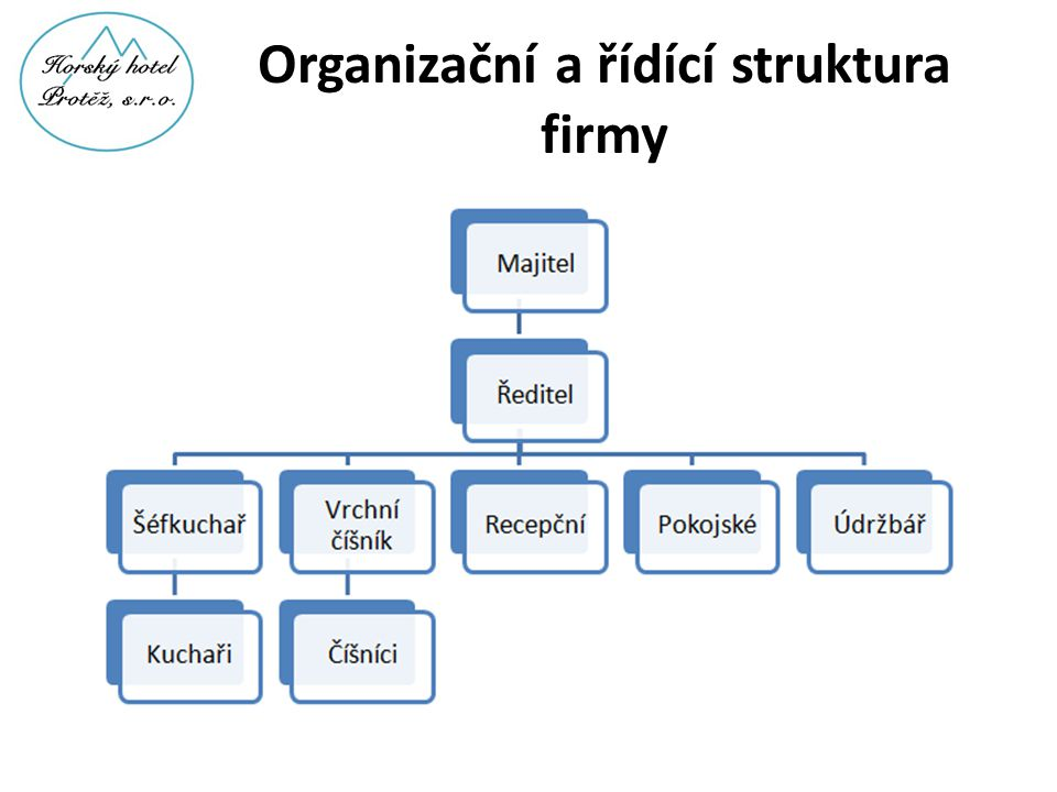 Organizační a řídící struktura firmy