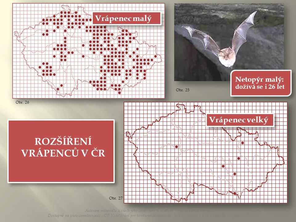 ROZŠÍŘENÍ VRÁPENCŮ V ČR