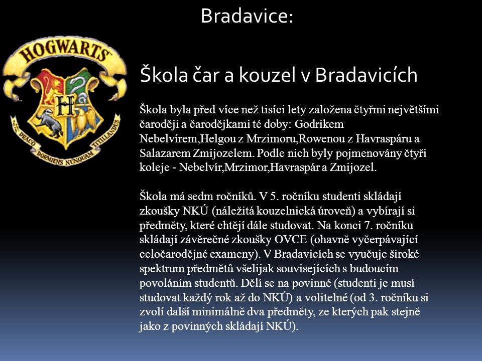 Bradavice: