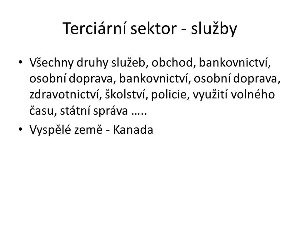 Terciární sektor - služby