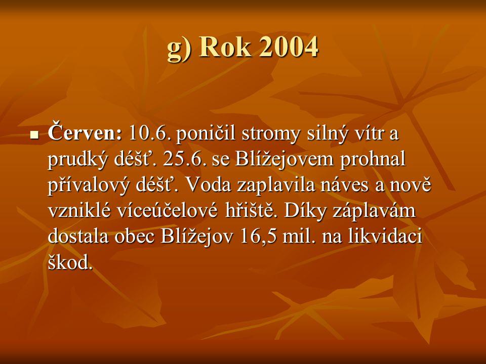 g) Rok 2004