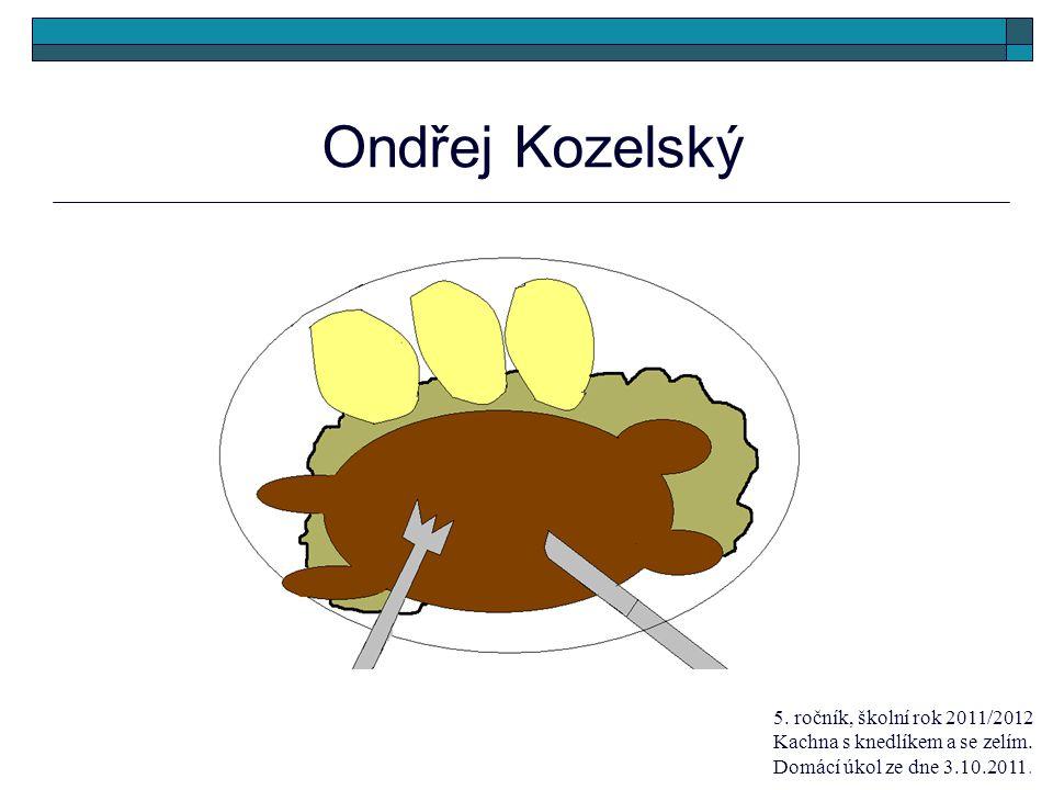 Ondřej Kozelský 5. ročník, školní rok 2011/2012 Kachna s knedlíkem a se zelím.