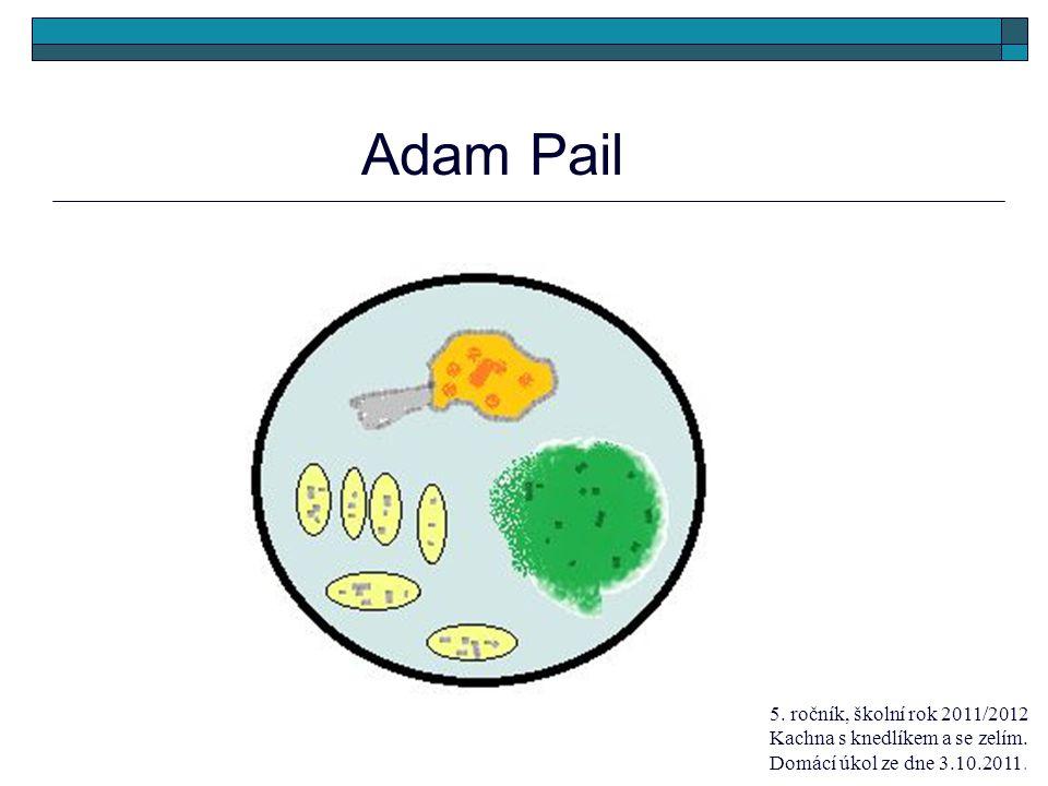 Adam Pail 5. ročník, školní rok 2011/2012 Kachna s knedlíkem a se zelím.