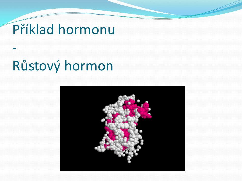 Příklad hormonu - Růstový hormon