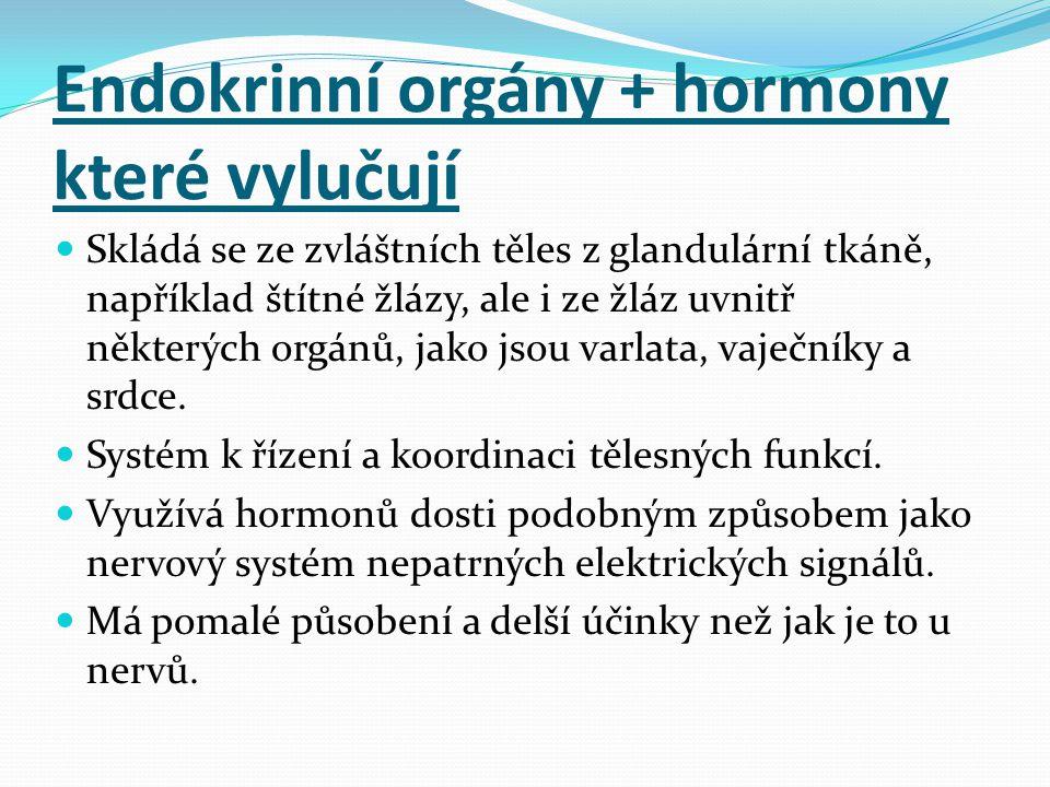Endokrinní orgány + hormony které vylučují