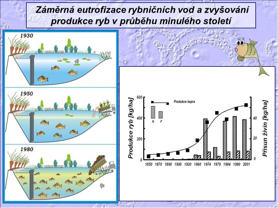 Záměrná eutrofizace rybničních vod a zvyšování produkce ryb v průběhu minulého století