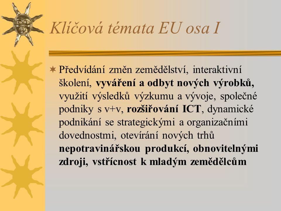 Klíčová témata EU osa I