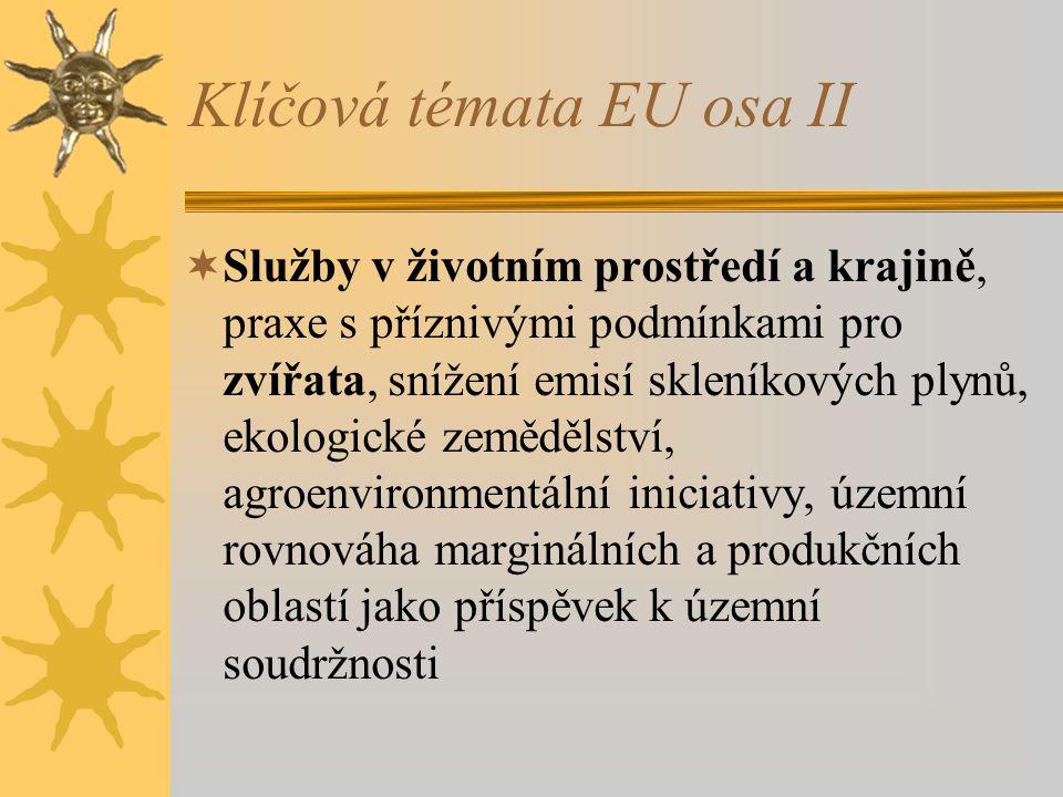 Klíčová témata EU osa II