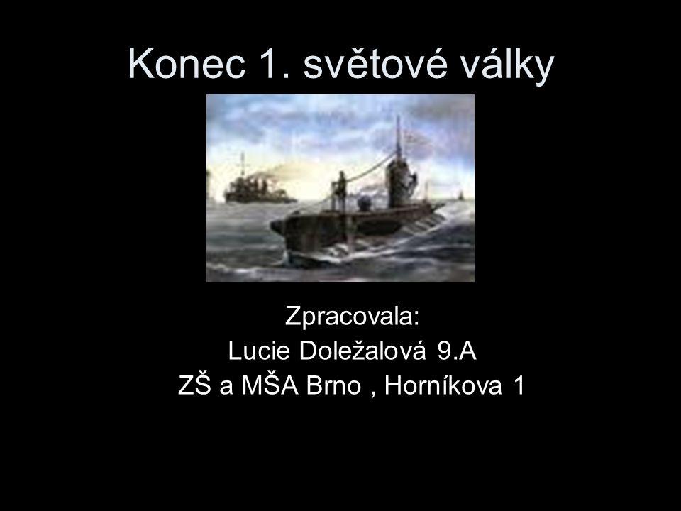 Zpracovala: Lucie Doležalová 9.A ZŠ a MŠA Brno , Horníkova 1