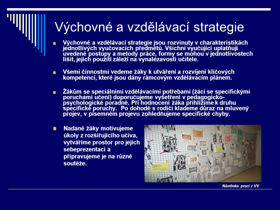 Výchovné a vzdělávací strategie