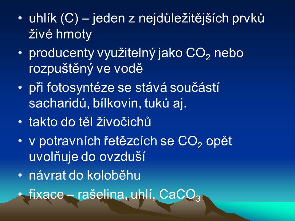 uhlík (C) – jeden z nejdůležitějších prvků živé hmoty