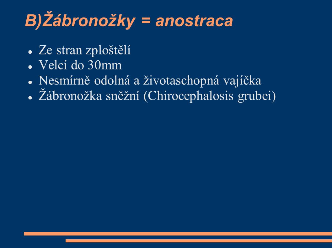 B)Žábronožky = anostraca