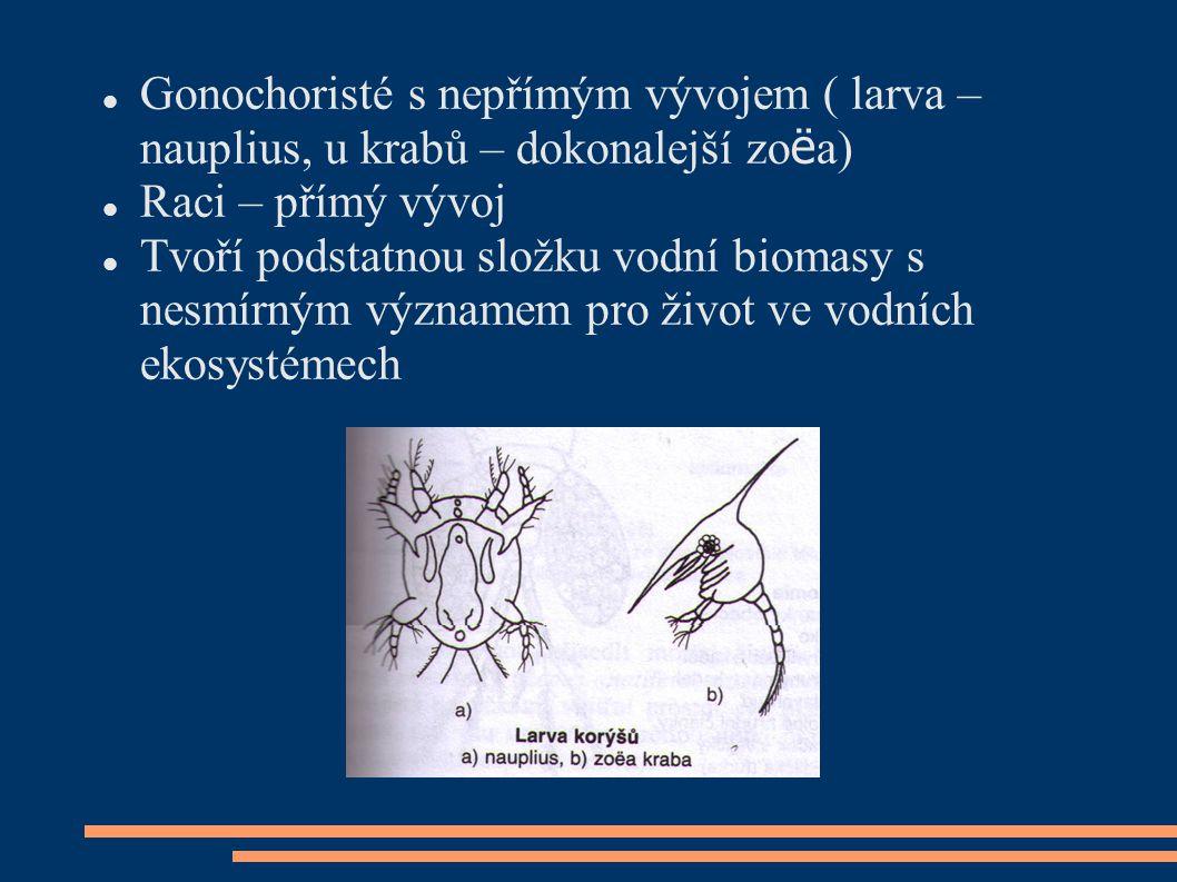 Gonochoristé s nepřímým vývojem ( larva – nauplius, u krabů – dokonalejší zoëa)