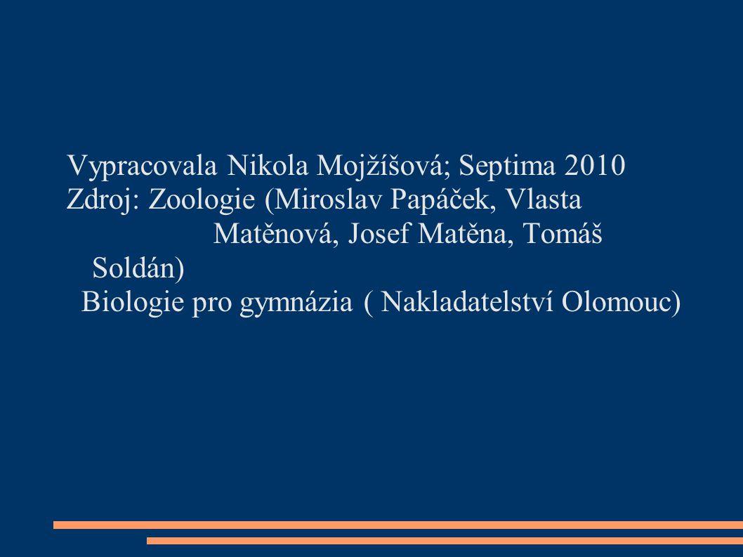 Vypracovala Nikola Mojžíšová; Septima 2010