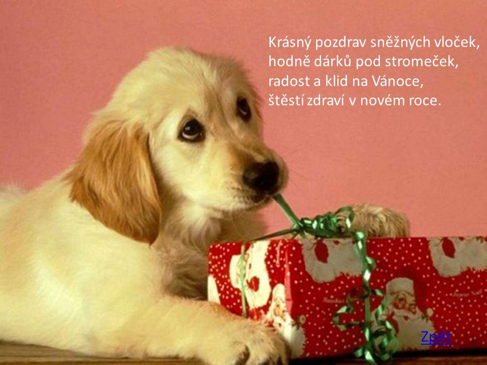 Krásný pozdrav sněžných vloček, hodně dárků pod stromeček, radost a klid na Vánoce, štěstí zdraví v novém roce.