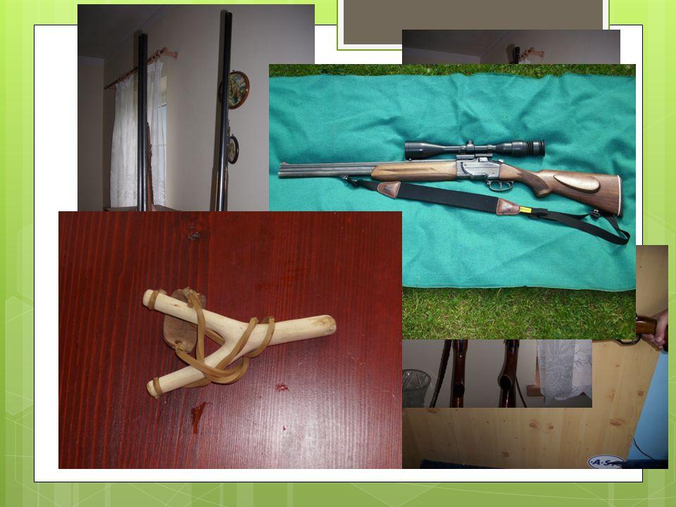Střelectví Střelné zbraně Palné zbraně Chladné – prak