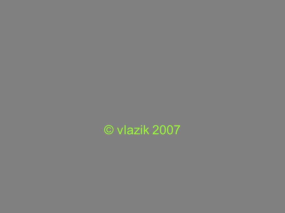 © vlazik 2007