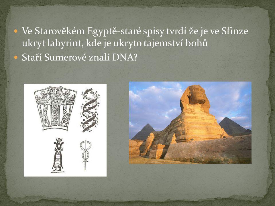 Ve Starověkém Egyptě-staré spisy tvrdí že je ve Sfinze ukryt labyrint, kde je ukryto tajemství bohů