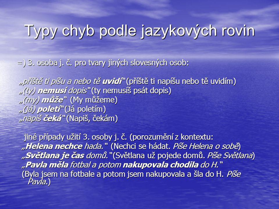 Typy chyb podle jazykových rovin