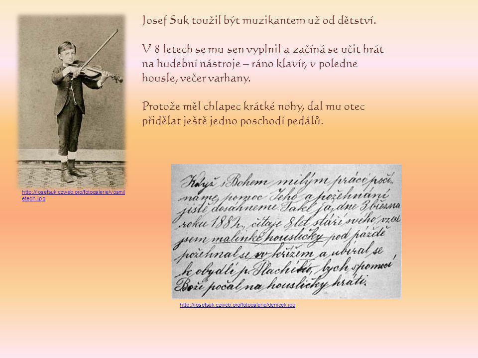 Josef Suk toužil být muzikantem už od dětství.