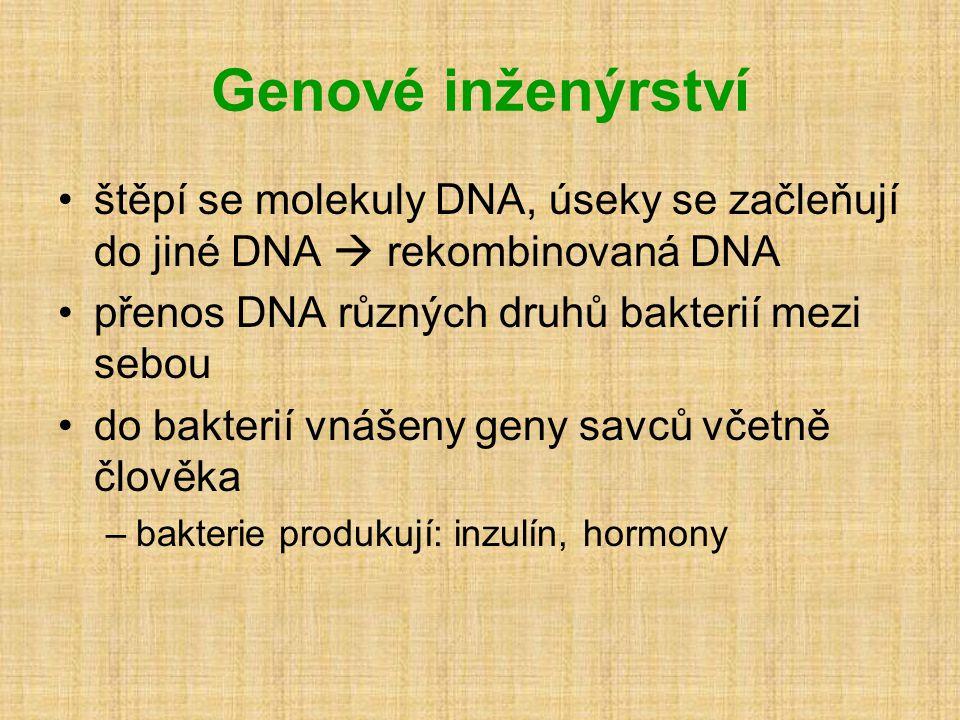Genové inženýrství štěpí se molekuly DNA, úseky se začleňují do jiné DNA  rekombinovaná DNA. přenos DNA různých druhů bakterií mezi sebou.