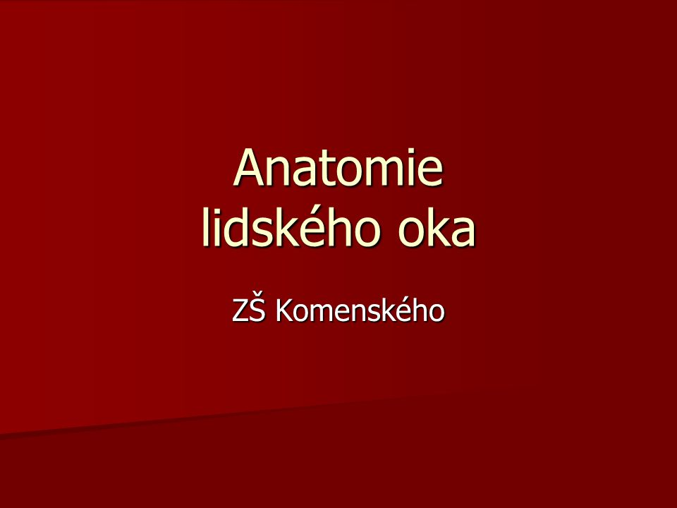 Anatomie lidského oka ZŠ Komenského