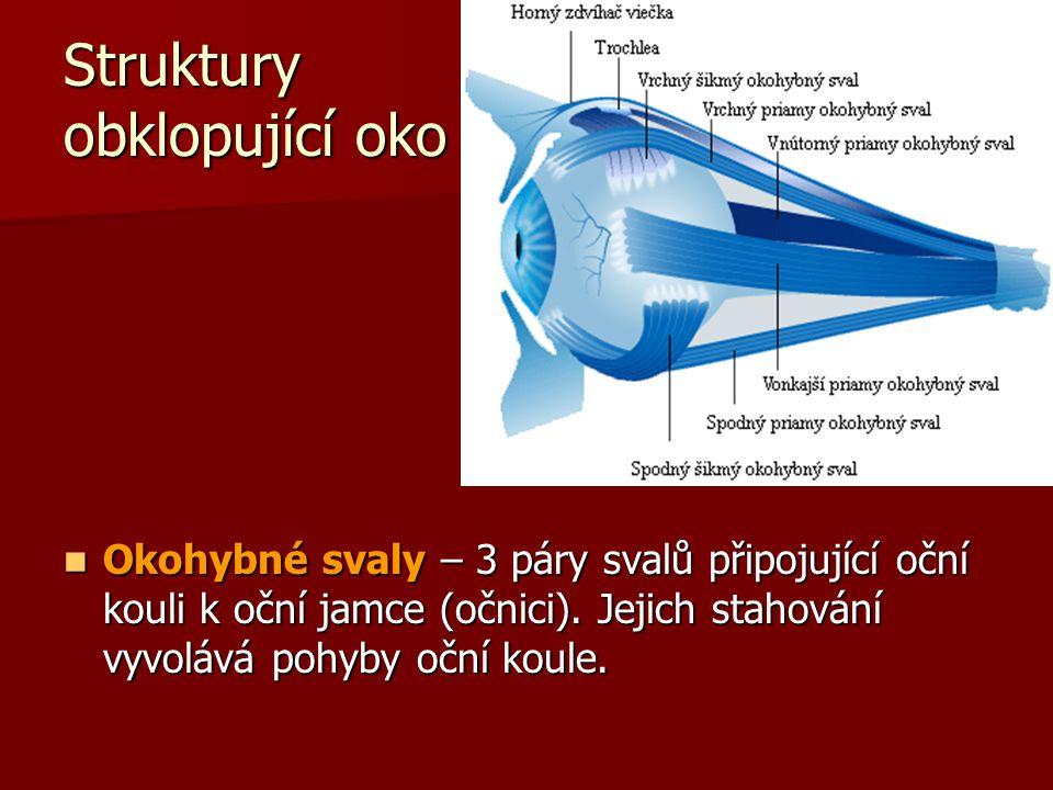 Struktury obklopující oko