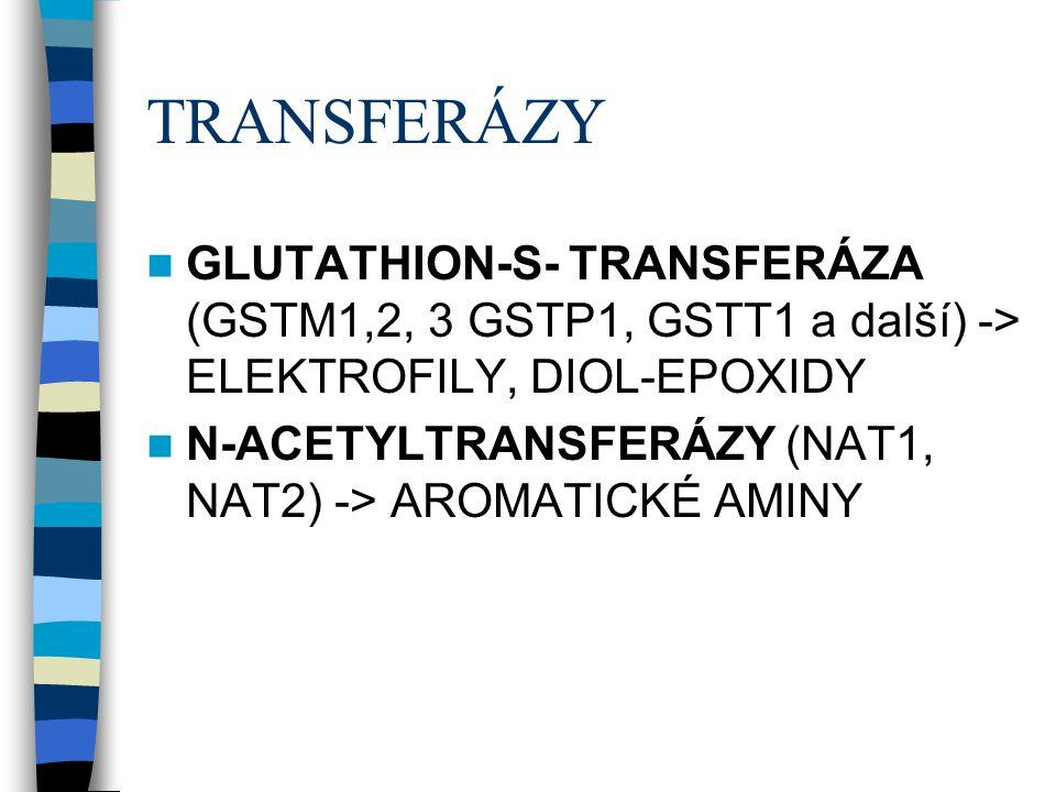 TRANSFERÁZY GLUTATHION-S- TRANSFERÁZA (GSTM1,2, 3 GSTP1, GSTT1 a další) -> ELEKTROFILY, DIOL-EPOXIDY.