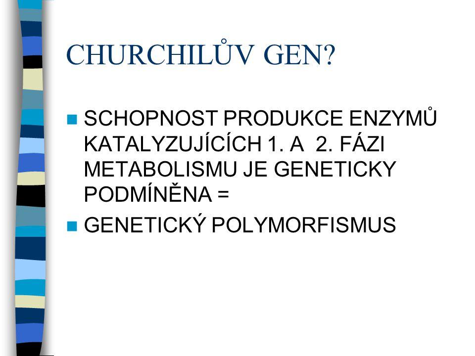 CHURCHILŮV GEN SCHOPNOST PRODUKCE ENZYMŮ KATALYZUJÍCÍCH 1. A 2. FÁZI METABOLISMU JE GENETICKY PODMÍNĚNA =