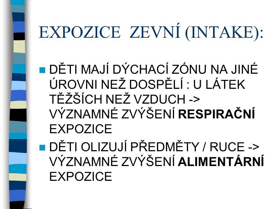 EXPOZICE ZEVNÍ (INTAKE):