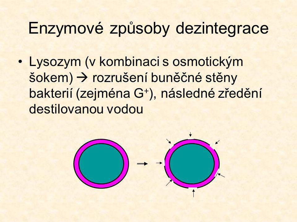 Enzymové způsoby dezintegrace
