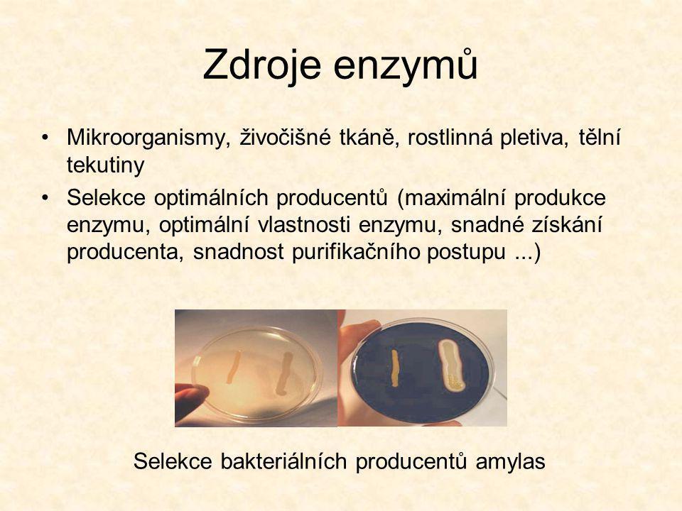 Zdroje enzymů Mikroorganismy, živočišné tkáně, rostlinná pletiva, tělní tekutiny.