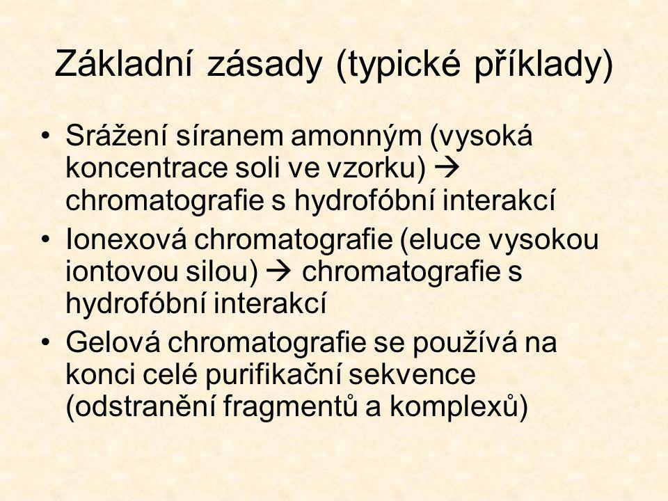 Základní zásady (typické příklady)