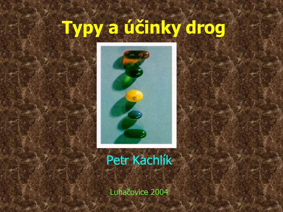 Petr Kachlík Luhačovice 2004