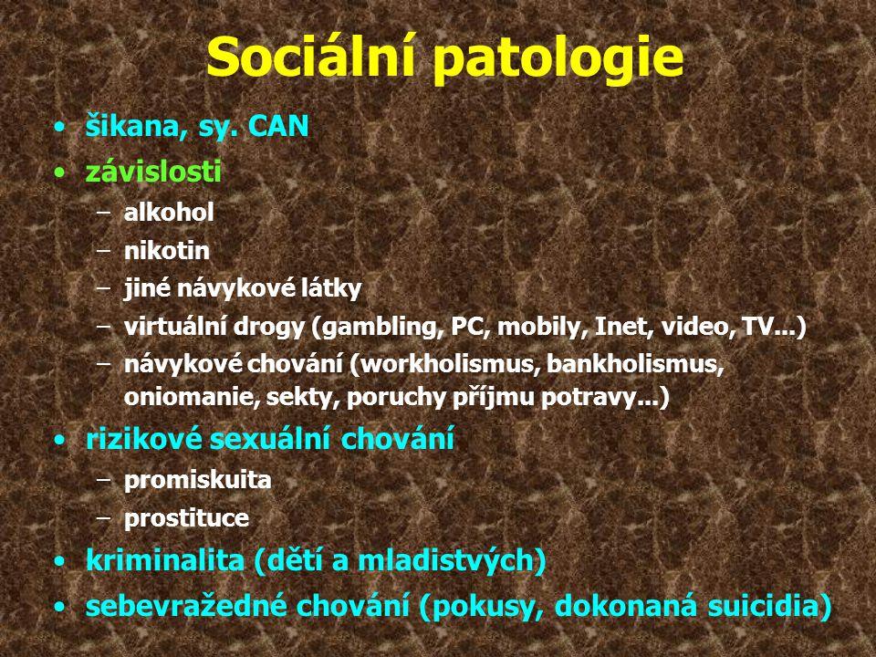 Sociální patologie šikana, sy. CAN závislosti