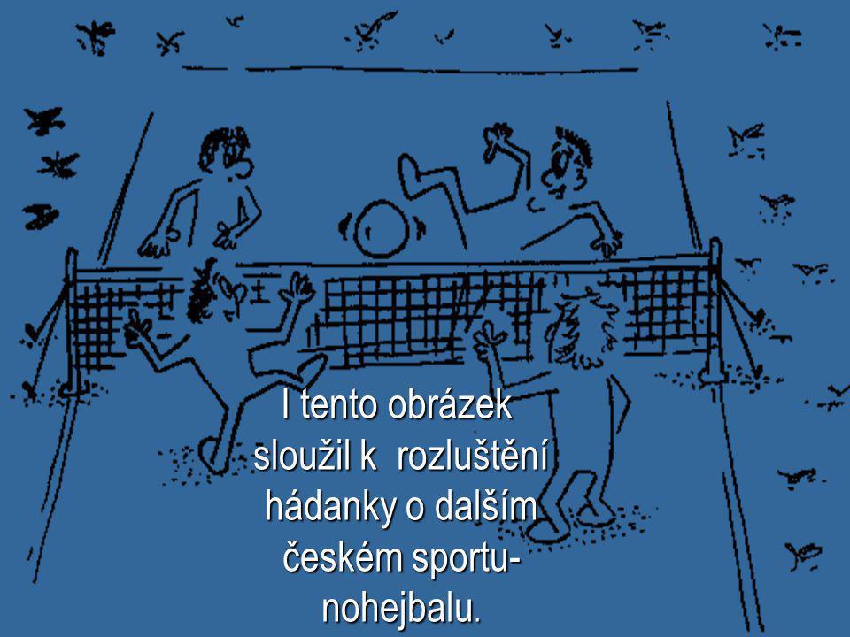 I tento obrázek sloužil k rozluštění hádanky o dalším českém sportu-nohejbalu.