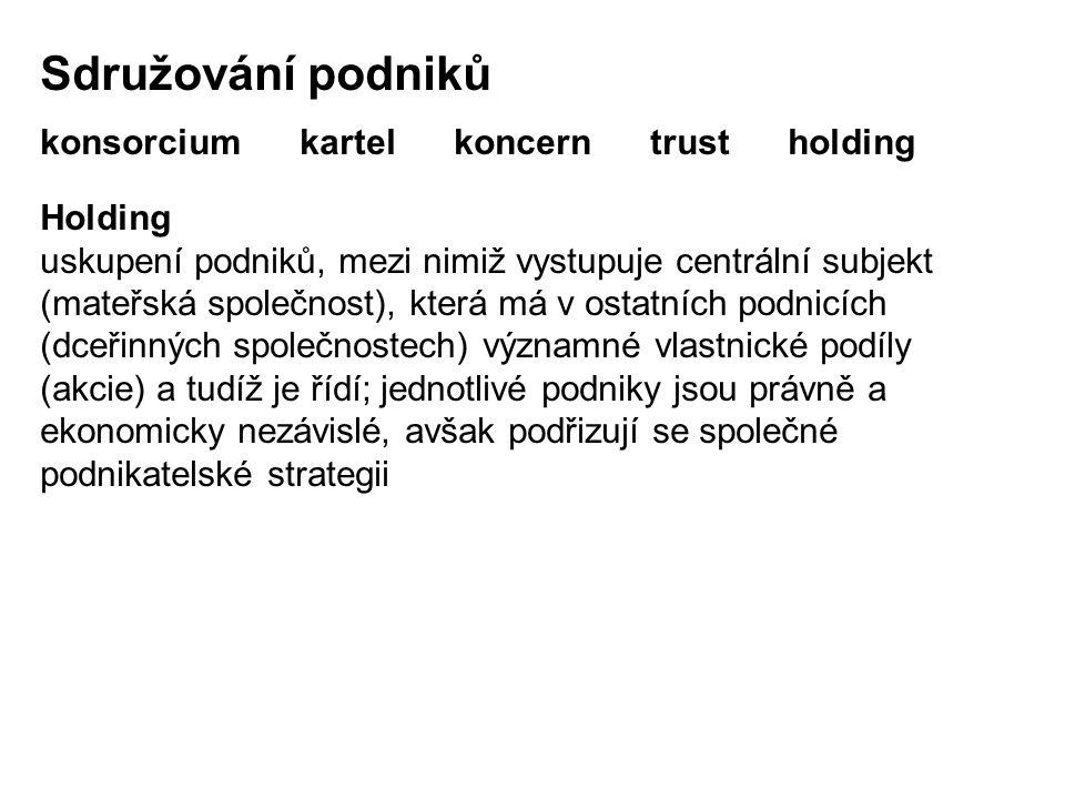 Sdružování podniků konsorcium kartel koncern trust holding Holding