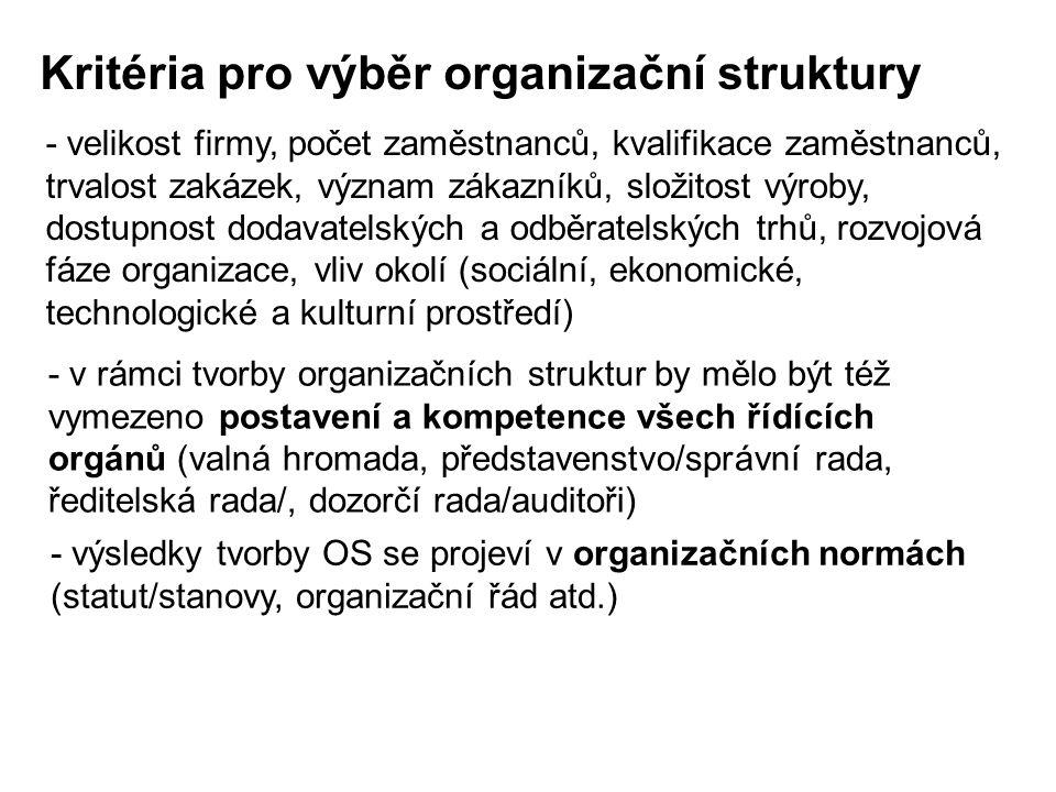 Kritéria pro výběr organizační struktury