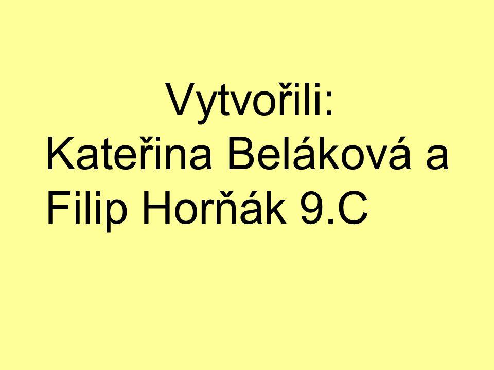 Vytvořili: Kateřina Beláková a Filip Horňák 9.C