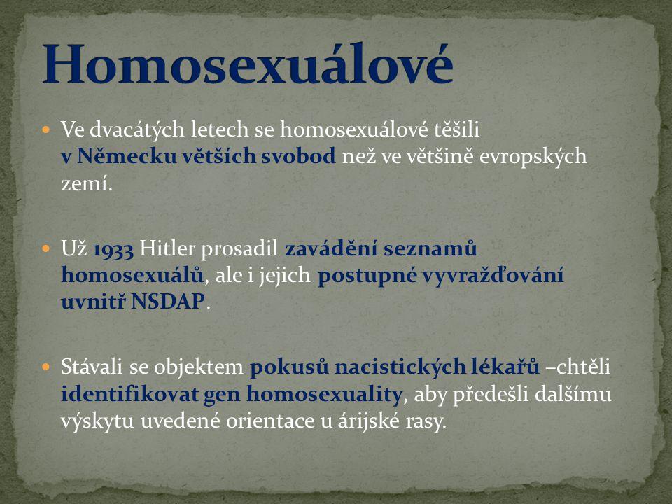 Homosexuálové Ve dvacátých letech se homosexuálové těšili v Německu větších svobod než ve většině evropských zemí.