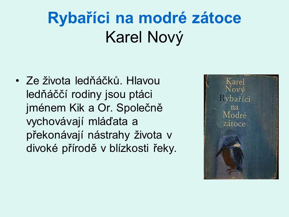 Rybaříci na modré zátoce Karel Nový