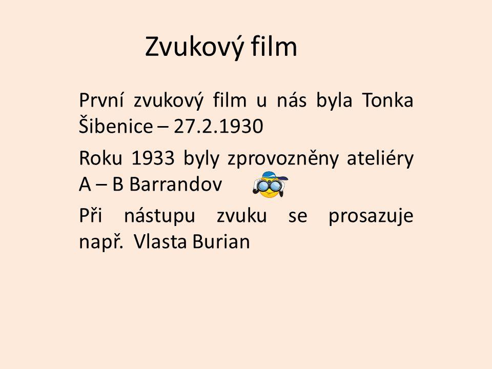 Zvukový film